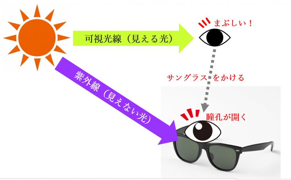 濃いサングラスをかけたときの紫外線を受けやすくなる図